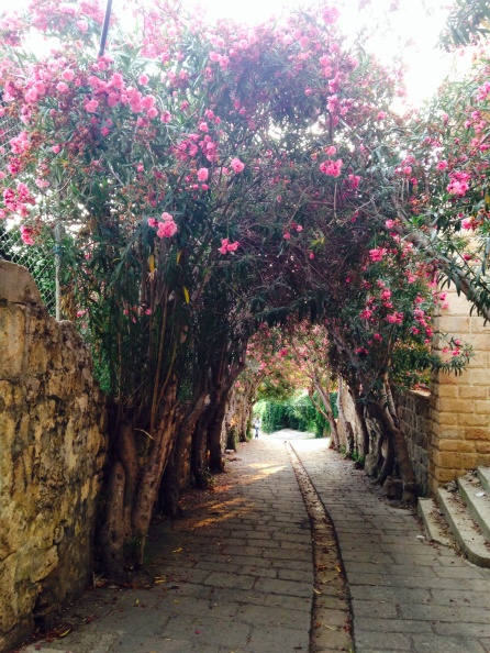 Mountain area Jbeil